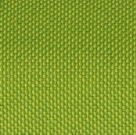 127 - kiwi