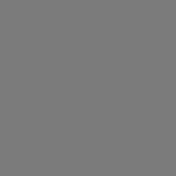 Korpusfarbe gussgrau