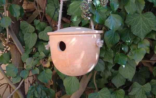 ZAUNKÖNIG HÖHLE aus Keramik